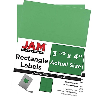 JAM Paper® Mailing Address Labels, 3 1/3 x 4, AstroBrights® Gamma Green, 2 packs of 120 (302725776g)