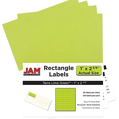 JAM Paper® Mailing Address Labels, 1 x 2 5/8, AstroBrights® Terra Lime Green, 4 packs of 120 (302725778g)