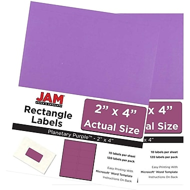 JAM Paper® Mailing Address Labels, 3 1/3 x 4, AstroBrights® Planetary Purple, 2 packs of 120 (302725792g)