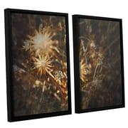 ArtWall Falling Towards Stars by Mark Ross 2 Piece Framed Photographic Print Set
