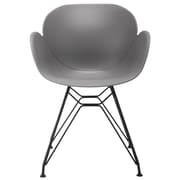 eModern Decor Arm Chair; Dark Gray
