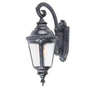 Y Decor Dallin 1 Light Outdoor Wall Lantern; Medium