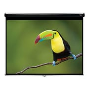 Hamilton Buhl™ WS-W7296-BLK Pull Down Video Projector Screen, 120""