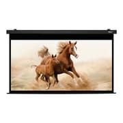 Hamilton Buhl™ HBS59105BK Manual Pull Down HDTV Projector Screen, 120""