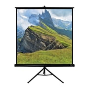 Hamilton Buhl™ TPS-T60-BLK Floor Electric Square Projector Screen, 85""