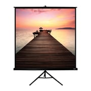 Hamilton Buhl™ TPS-T70-BLK Floor Square Projector Screen, 99""