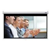 "Hamilton Buhl™ WS-W4580 Manual Pull Down HDTV Projector Screen, 92"""