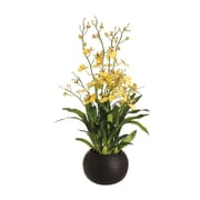 Tori Home Dancing Orchid w/ Sphere Vase in Yellow; 38''H