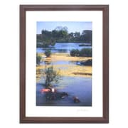 Novica The Beauty of the Marsh by Akha Jim Framed Photographic Print