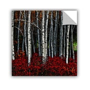 ArtWall Chandler Chase Red Birch' Painting Print Removable Wall Mural; 24'' H x 24'' W x 0.1'' D