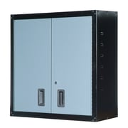 International 3' H x 3' W x 1' D Wall Cabinet