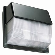 Lithonia Lighting 20 Light Outdoor Flush Mount
