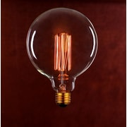 String Light Co Incandescent Light Bulb