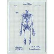 Inked and Screened Vintage Inventions 'Anatomical Skeleton 1911' Graphic Art in White Grid/Blue Ink