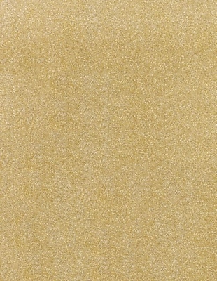 LUX 8 1/2 x 11 Cardstock (8 1/2 x 11) - Gold Sparkle - Pack of 50 (2444960) 2444960