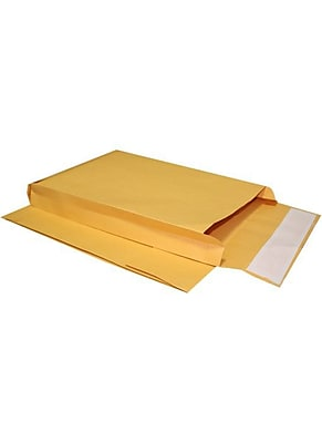 LUX 4 1/8 x 9 1/2 x 2 Expansion Envelopes (4 1/8 x 9 1/2 x 2) - Brown Kraft - Pack of 500 (2444766) 2444766