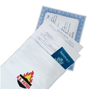 """U.S. Patrol 10"""" X 15""""  Fire Resistant Document Bag (JB5076)"""