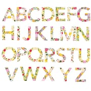 Eco Wall Decals 26 Piece Alphabet Wall Decal Set