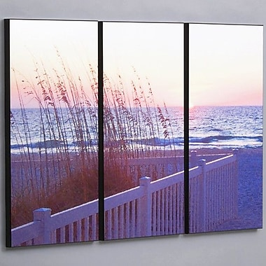 Wilson Studios Gulf Sunset w/ Sea Wheat 3 Piece Photographic Print Set