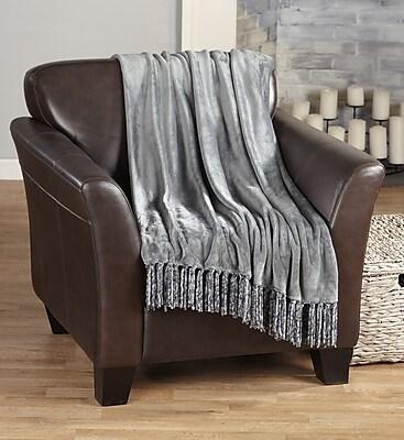 Home Fashion Designs Raya Ultra Velvet Plush Super Soft Blanket; Gray WYF078279398318