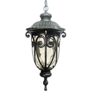 Y Decor Hailee 1 Light Outdoor Wall lantern