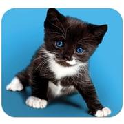 Staples® Kitten Mouse Pad (12303-CA)