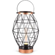 Lone Elm Studios Oblong Metal Caged Outdoor 23.23'' Table Lamp