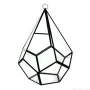CYSExcel Novelty Glass/Metal Terrarium Planter; 10'' H x 7'' W x 7'' D