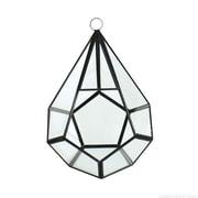 CYSExcel Novelty Glass/Metal Terrarium Planter; 9'' H x 6'' W x 6'' D