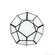 CYSExcel Round Glass/Metal Terrarium Planter; 6'' H x 6'' W x 6'' D
