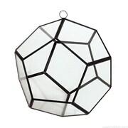 CYSExcel Round Glass/Metal Terrarium Planter; 8'' H x 9'' W x 9'' D