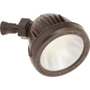 Progress Lighting 1-Light LED Flood Light; Antique Bronze
