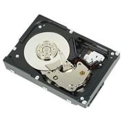 Dell® 400-AJSC 600GB SAS 12 Gbps Internal Hard Drive, Black