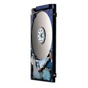 HGST Travelstar Z7K500 500GB SATA 6 Gbps Internal Hard Drive, Black