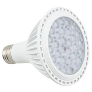 American Lighting LLC LED Light Bulb; 12W