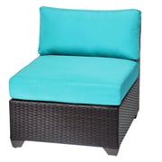 TK Classics Barbados Side Chair (Set of 2); Grey