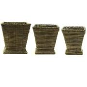 Essential Decor & Beyond 3 Piece Grass Vase Set