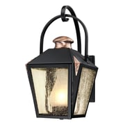 Westinghouse Lighting Valley Forge 1 Light Outdoor Wall Lantern