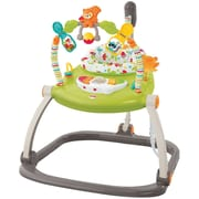 Fisher-Price® Infant SpaceSaver Jumperoo, Woodland Friends (CBV62)