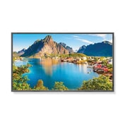 "NEC E805-PC2 Commercial-Grade 80"" LED LCD Digital Signage Display, Black"