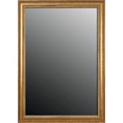 Second Look Mirrors Ornate Frame Wall Mirror; 58'' H x 22'' W