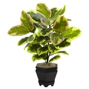 Nearly Natural Henderson Variegated Rubber Leaf Plant in Planter