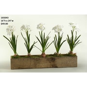 Laurel Foundry Modern Farmhouse Paper in Rectangle Wooden Planter