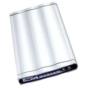 Buslink® Disk-On-The-Go DRF-500-U2 500GB SATA Encrypted Portable External Hard Drive, Silver
