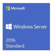 Microsoft Windows Server 2016 Standard Software License (P73-07172)