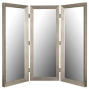 Hitchcock Butterfield Company 72'' x 72'' Baroni Silver Mirror 3 Panel Room Divider