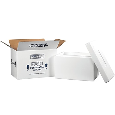 17''x10''x10.5'' Insulated Shipping Box,200#, 1/Case (246C)