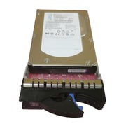 IBM 42C0242 300GB SAS 6 Gbps Hot-Swap Internal Hard Drive, Black/Silver