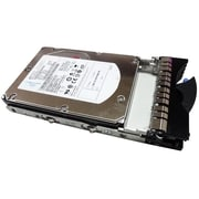 IBM 43X0805 300GB SAS 3 Gbps Hot-Swap Internal Hard Drive, Black/Silver