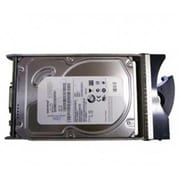 IBM 49Y1869 600GB SAS 6 Gbps Hot-Swap Internal Hard Drive, Black/Silver